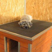 [M-HS-P] Thermo Madera kutyaház (lapostetővel)