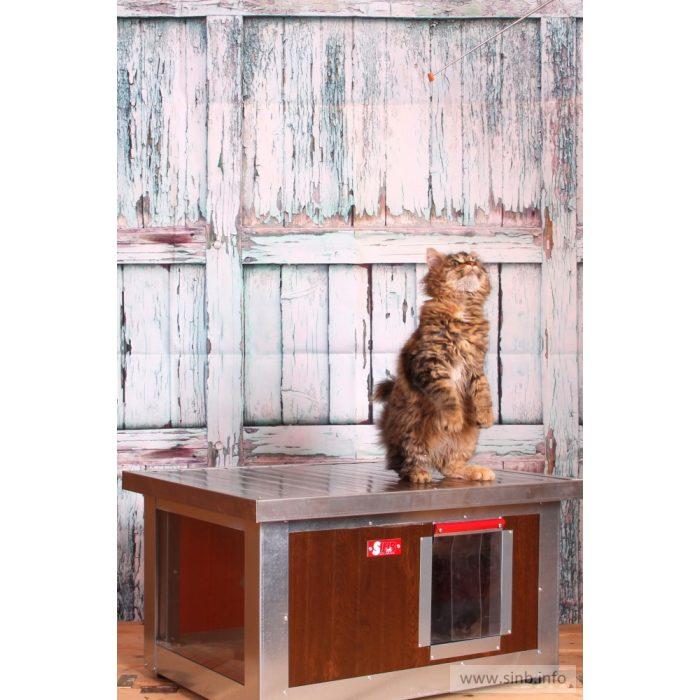 """[WH_C1-W] Thermo Woody cicaház panoráma ablakkal """"CAT"""" belméret (HxSZxM:54x38x28cm)"""