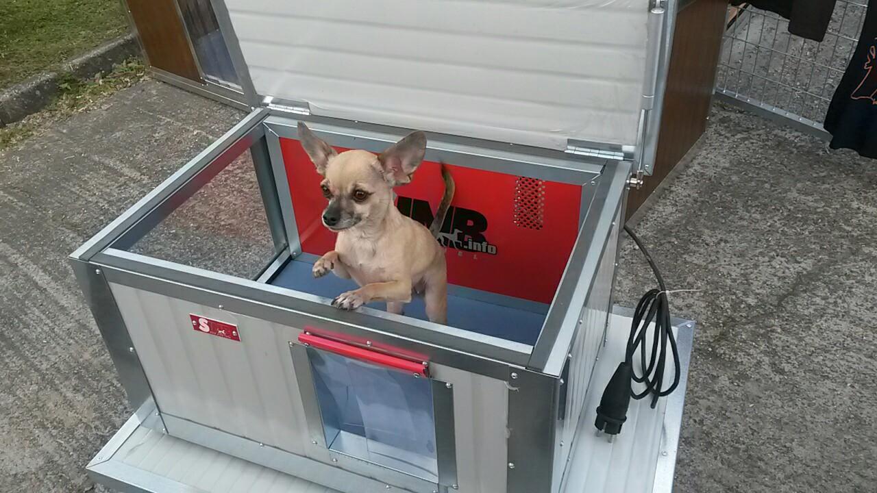 Kutyaház fűtés, avagy kell-e kutyámnak fűthető kutyaház?
