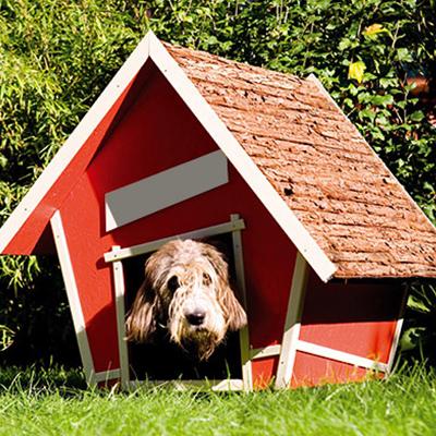 Kutyaház OBI - barkácsáruház körkép 1. rész