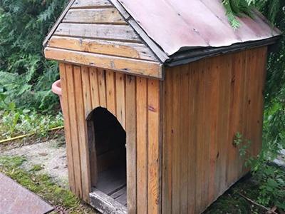Olcsó kutyaház buktatói | kerüld el a ráfizetést!